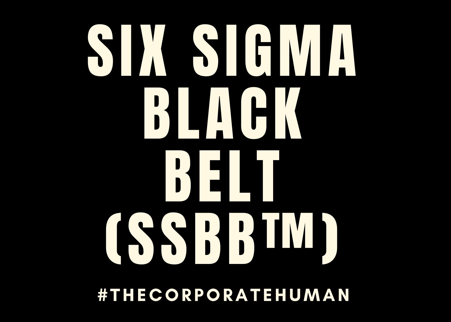 Six Sigma Black Belt (SSBB™)