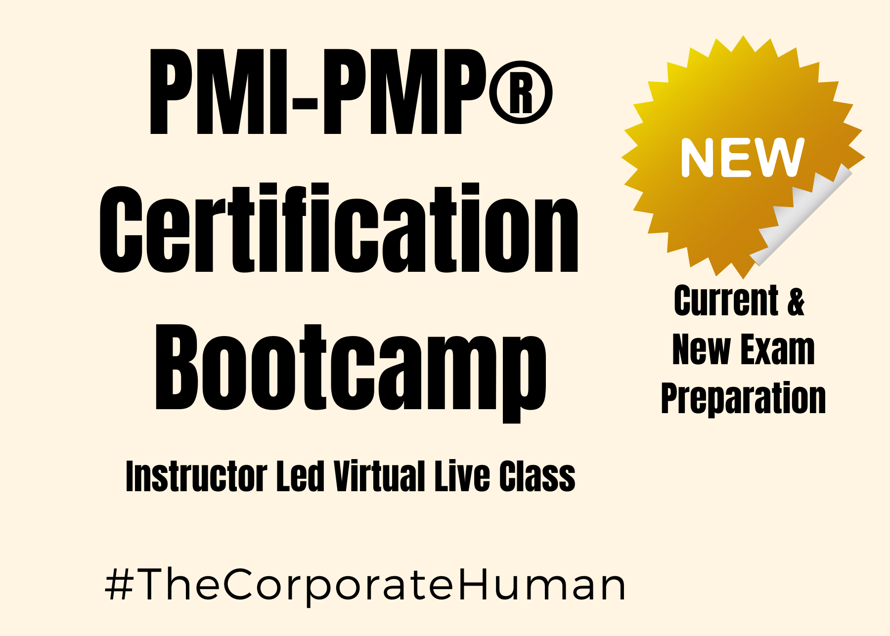 Instructor Led Virtual Live Class